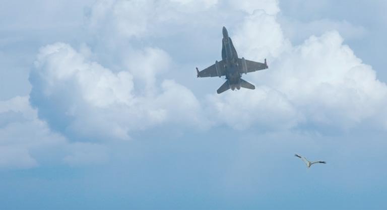 hawk fighter finland